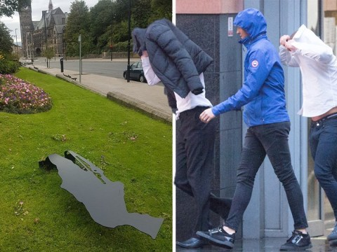 Shamed teenagers hide from cameras after damaging WWI tribute in drunk rampage