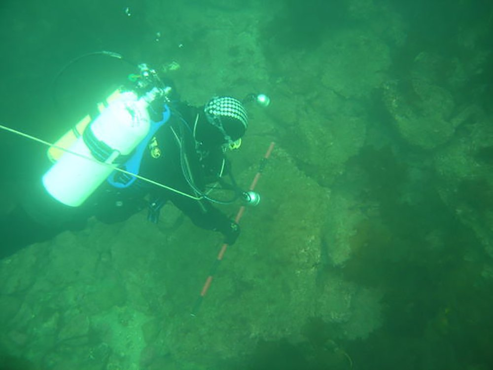 Picture: University of St. Andrews Britain's Atlantis yields its secrets after robots explore seabed