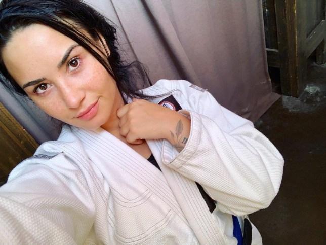 (Picture: Demi Lovato/Instagram)