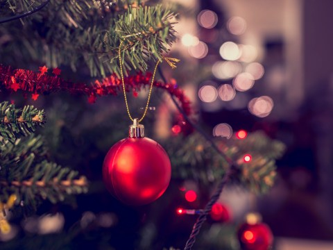 How to recycle Christmas cards and Christmas trees