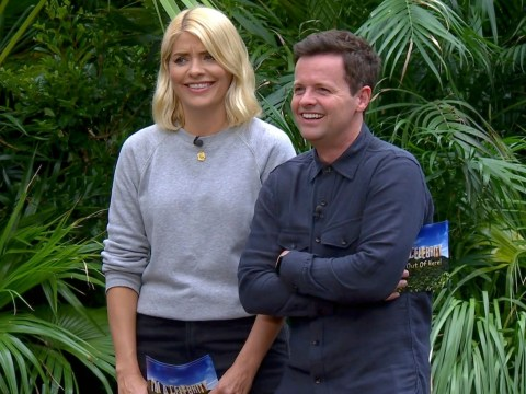Should Holly Willoughby return to I'm A Celebrity Get Me Out Of Here! as ratings take a dip?