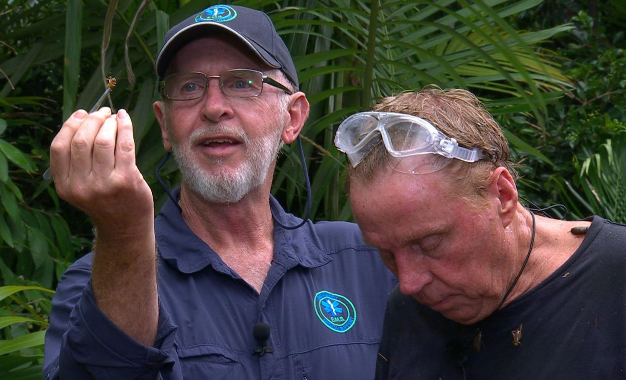 I'm a Celeb's Harry Redknapp gets cricket stuck in his ear in horrific final Bushtucker trial