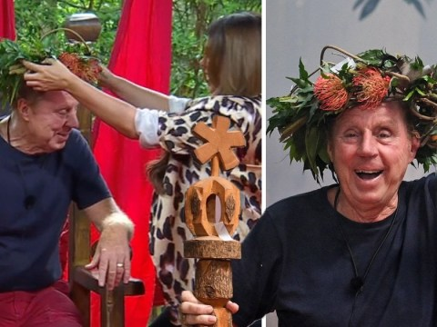 Odds slashed on Harry Redknapp being knighted after I'm A Celebrity victory