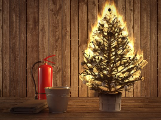 How To Avoid Your Christmas Tree Burning The House Down Metro News
