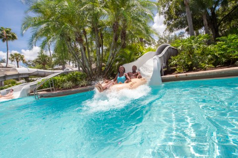 15 experiences you need to have at Walt Disney World Resort in
