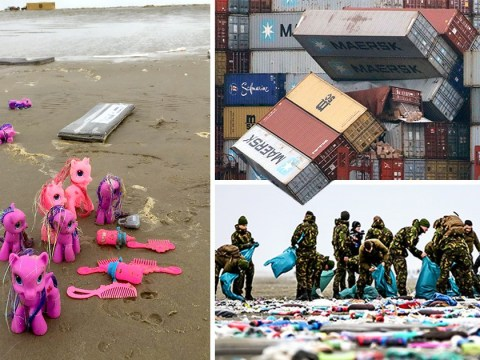 Beach fills with 'treasure' after 270 containers fall off cargo ship