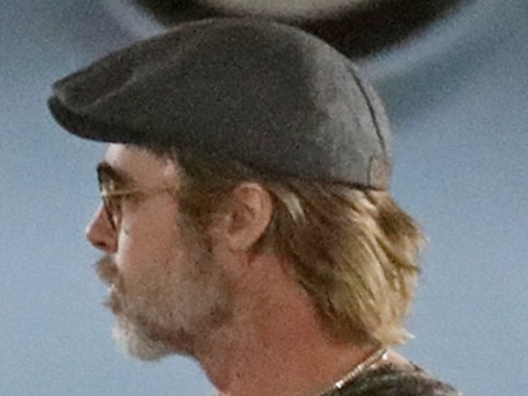Brad Pitt is having a grey day after celebrating Christmas with kids