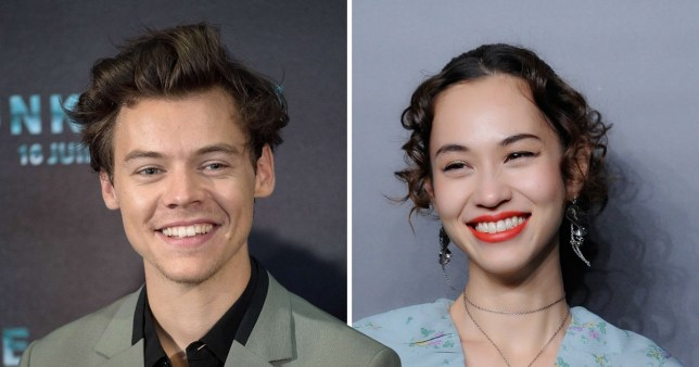 fake Harry dating Show