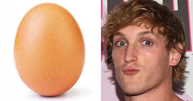 record breaking egg