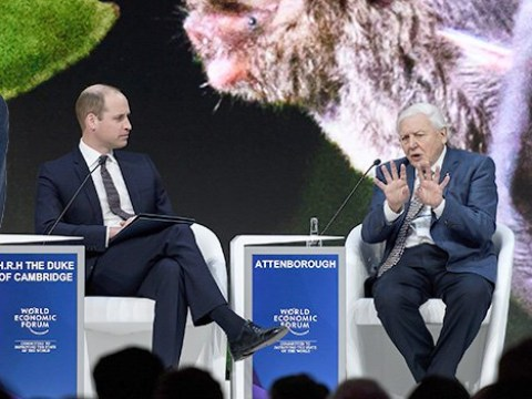 'We're out of touch,' Sir David Attenborough tells Prince William