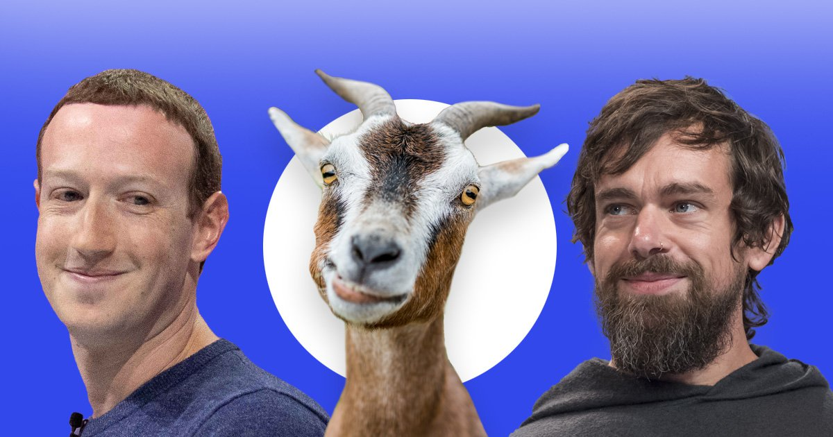 Mark Zuckerberg 'killed a goat and served it to Twitter boss Jack Dorsey'