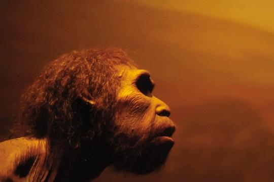 'Breakthrough' research shows just how much sex homo sapiens were having with Neanderthals PREIST.eps