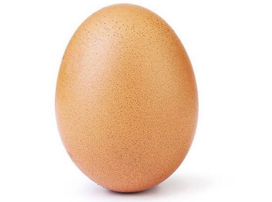 Picture: World Record Egg It's an egg... again