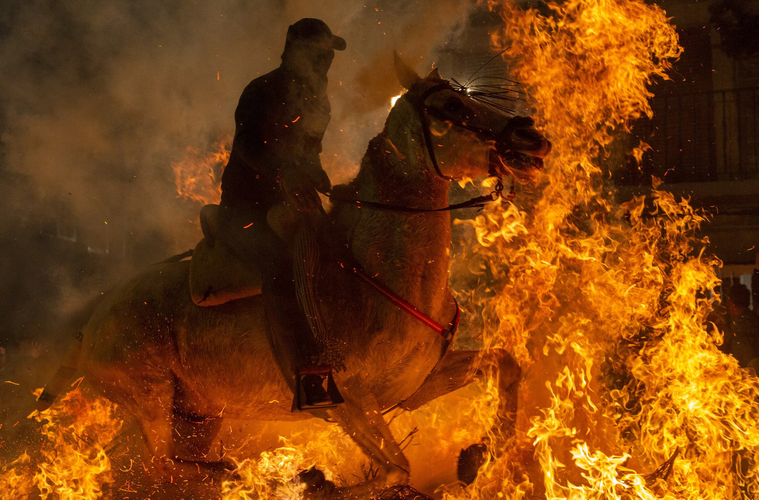 Incredible pictures of horses riding through fire to honour St Anthony