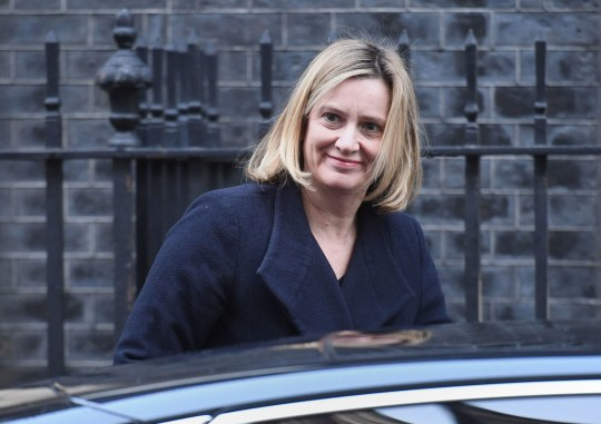 Work and Pensions Secretary Amber Rudd leaves 10 Downing Street, London, after a meeting of the cabinet. PRESS ASSOCIATION Photo. Picture date: Tuesday January 22, 2019. Photo credit should read: Stefan Rousseau/PA Wire