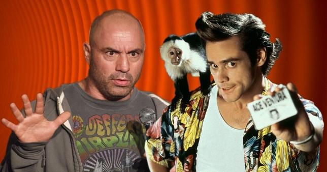 Joe Rogan brands Ace Ventura: Pet Detective as 'insanely transphobic