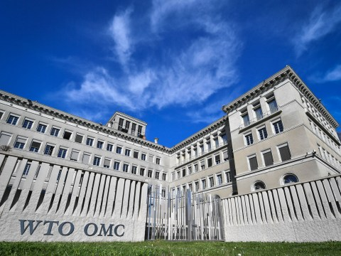 What is the WTO and what terms would the UK have to follow?