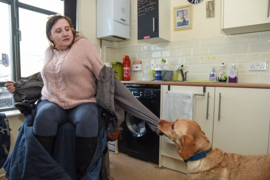 Kevin the support dog helps Wendy take off and put on her coat