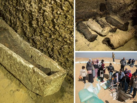 Ancient Egyptian tomb containing 50 mummies found in Cairo
