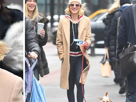 Naomi Watts is one dedicated dog owner as she braves the cold to keep pooch happy