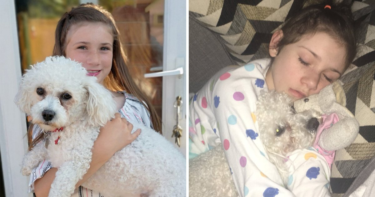 On the right, Millie smiling and holding Elmo. On the left, Millie sleeping with Elmo in her arms.
