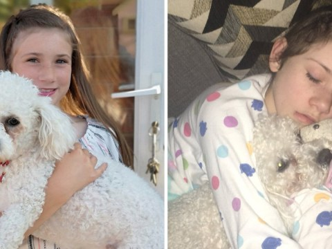 Girl who has seizures when she laughs saved by pet dog Elmo
