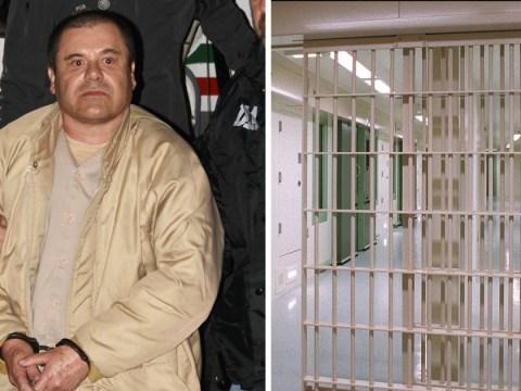 Drug kingpin El Chapo setenced to life plus 30 years in prison