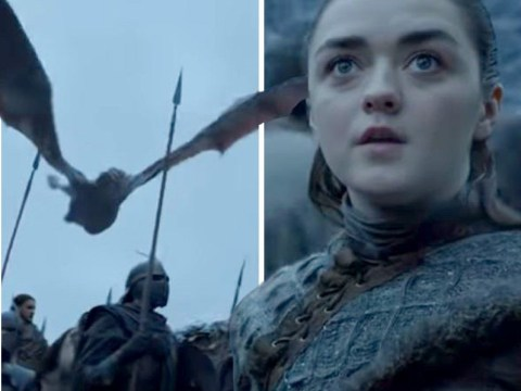 Game Of Thrones fans sent into meltdown as Arya Stark sees dragons for first time