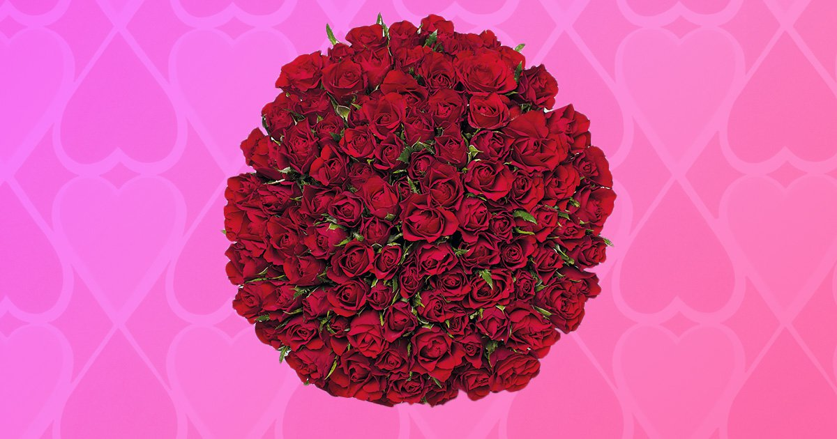 Lidl is selling a bouquet of 100 red roses for Valentine's Day for £25