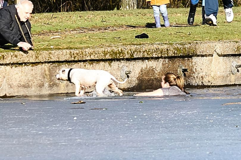 The woman was spotted trying to save the dog