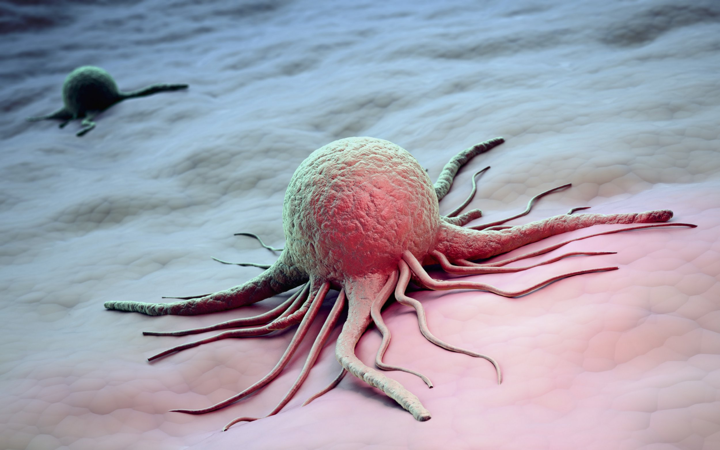 Scientists discover cancer cell Cancer cells, computer artwork.