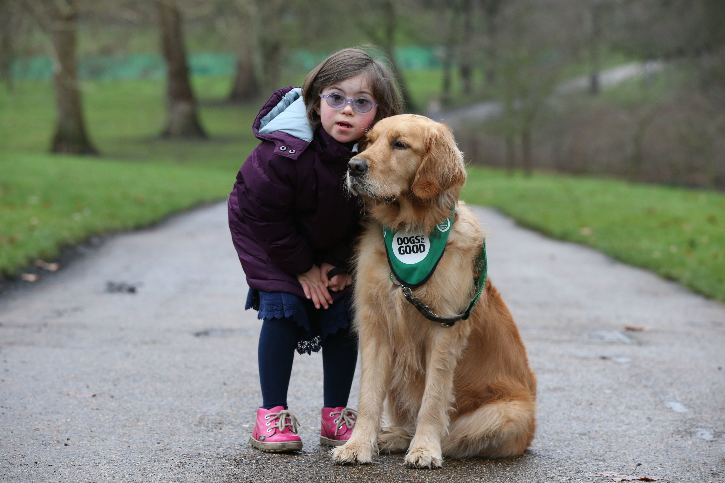 Girl with Down's Syndrome, 8, forms beautiful friendship with Golden Retriever