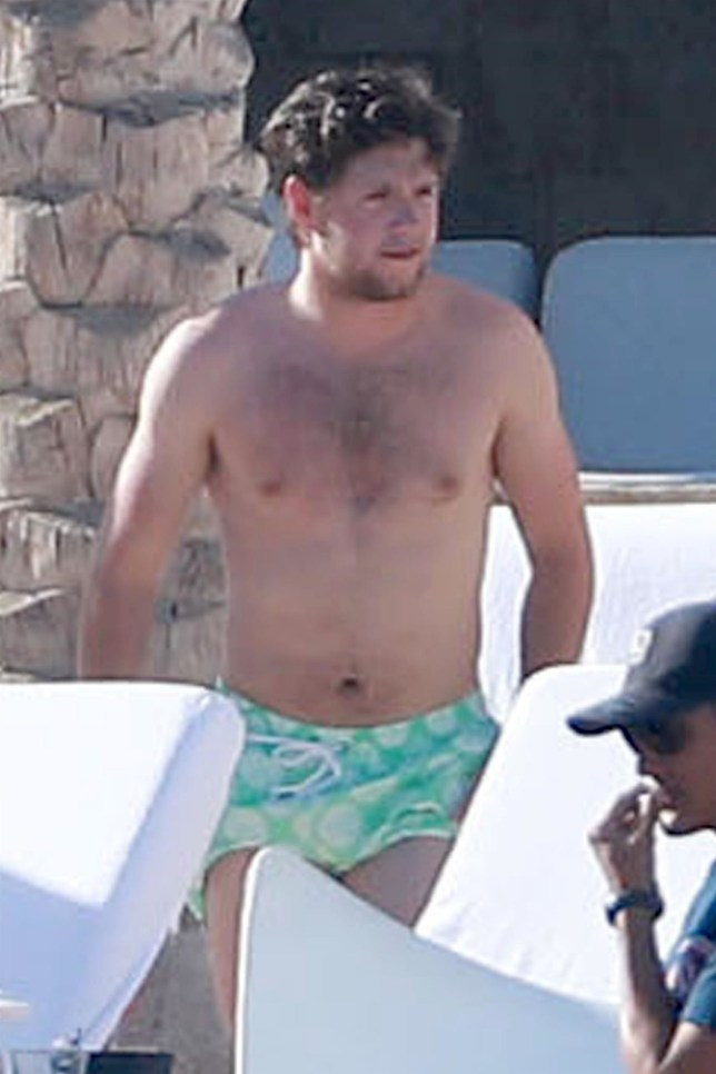 Cabo San Lucas, MEXICO - *EXCLUSIVE* - **WEB MUST CALL FOR PRICING** Musician Niall Horan and friend enjoy an afternoon poolside at their resort in Cabo San Lucas, Mexico. Niall and his friends had lunch before spending the rest of the day taking dips in the pool and soaking up the sun. Pictured: Niall Horan BACKGRID USA 5 FEBRUARY 2019 BYLINE MUST READ: HEM / BACKGRID USA: +1 310 798 9111 / usasales@backgrid.com UK: +44 208 344 2007 / uksales@backgrid.com *UK Clients - Pictures Containing Children Please Pixelate Face Prior To Publication*
