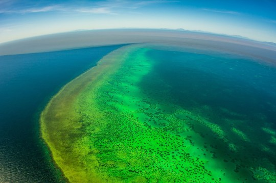 """TOPSHOT - A handout photo taken by Matt Curnock on February 13, off Townsville. 2019 and released on February 15 shows sediment (top) approaching Central Great Barrier Reef from recent unprecedented rain and flooding around Cape Cleveland, off Townsville. - Runoff from recent floods in northern Australia is flowing onto parts of the Barrier Reef, scientists said on February 14, starving coral of light and providing fodder for the predatory crown-of-thorns starfish. (Photo by MATT CURNOCK / Matt Curnock / AFP) / --EDITORS NOTE--- RESTRICTED TO EDITORIAL USE - MANDATORY CREDIT """"AFP PHOTO / Matt Curnock"""" - NO MARKETING - NO ADVERTISING CAMPAIGNS - DISTRIBUTED AS A SERVICE TO CLIENTS - NO ARCHIVESMATT CURNOCK/AFP/Getty Images"""