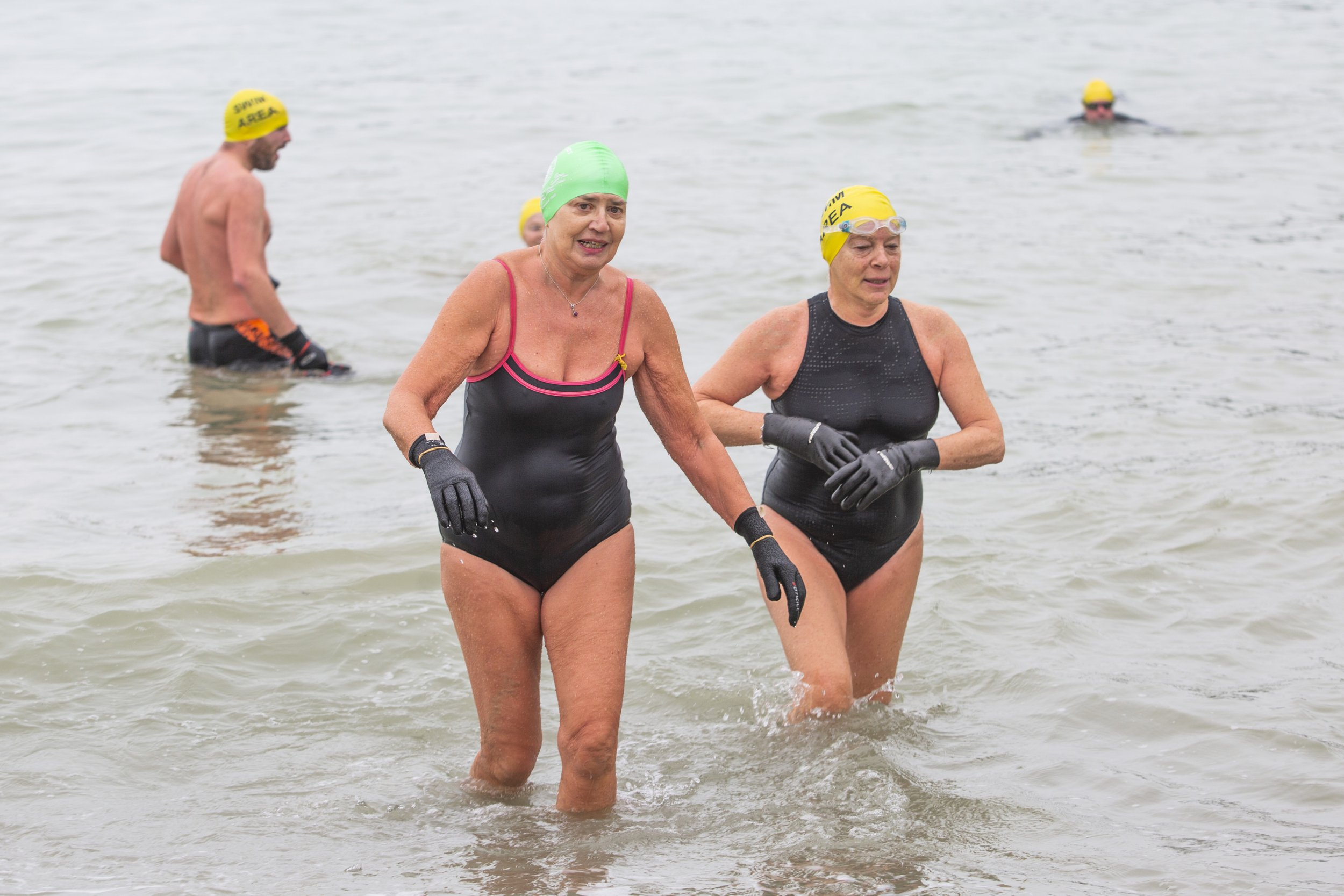 ? Licensed to London News Pictures. 16/02/2019. Brighton, UK. Members of the Brighton Swimming Club take the water in Brighton and Hove as mild weather is hitting the seaside resort. Photo credit: Hugo Michiels/LNP