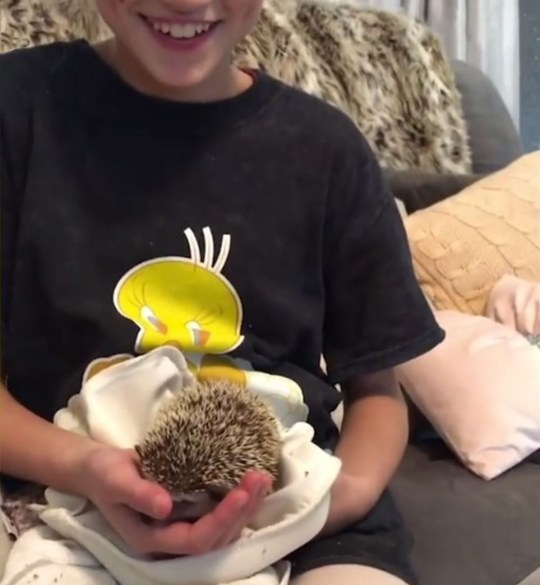 Picture: Katie Price Katie Price knows how to ignite debate as she gets daughter a porcupine