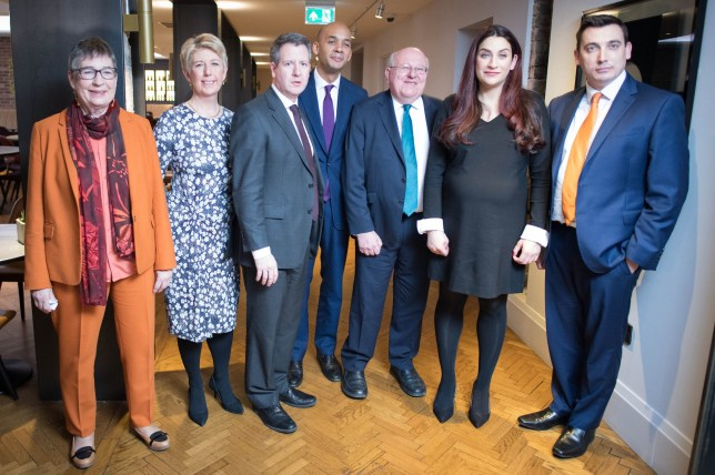 Labour MPs (left to right) Ann Coffey, Angela Smith, Chris Leslie, Chuka Umunna, Mike Gapes, Luciana Berger and Gavin Shuker