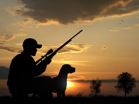 Man shot by his own dog has gun taken off him