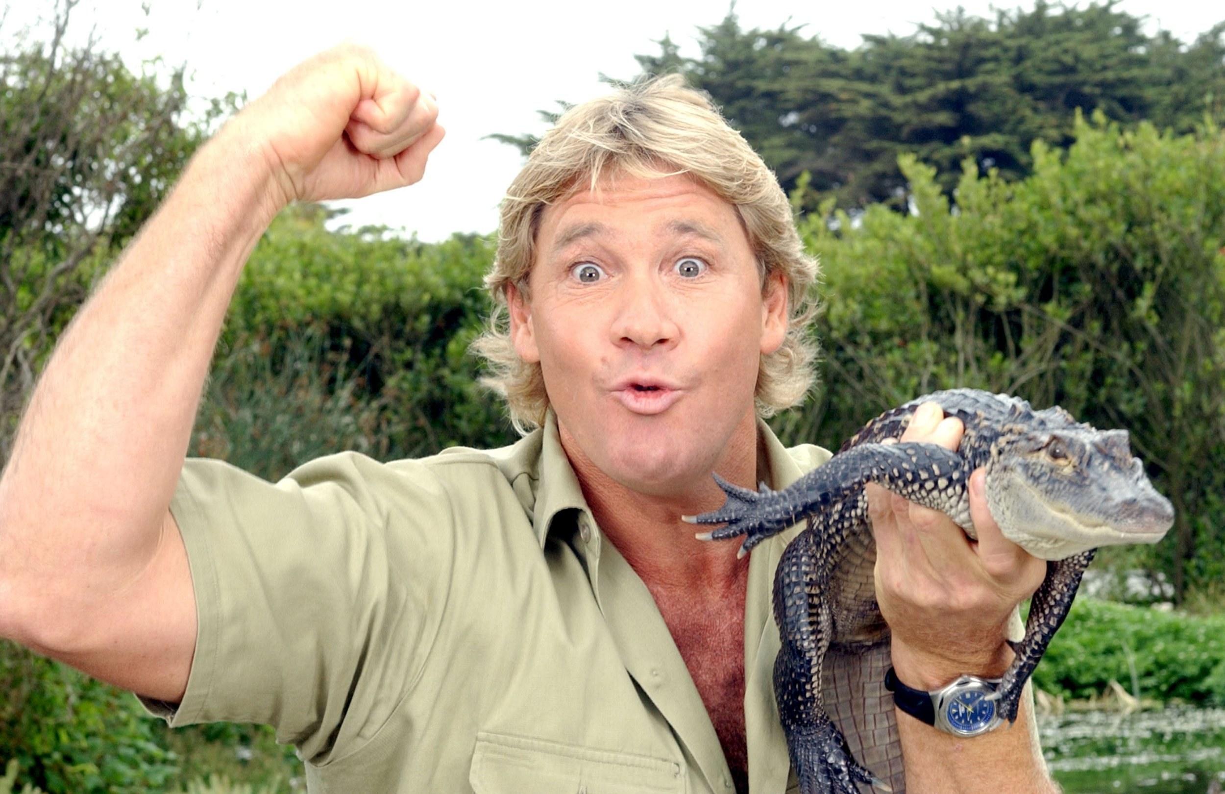 "SAN FRANCISCO - JUNE 26: ***EXCLUSIVE*** ""The Crocodile Hunter"", Steve Irwin, poses with a three foot long alligator at the San Francisco Zoo on June 26, 2002 in San Francisco, California. Irwin is on a 3-week tour to promote the release of his first feature film, ""The Crocodile Hunter: Collision Course"", due in theaters July 12th. (Photo by Justin Sullivan/Getty Images)"