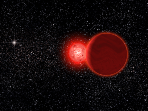 Humanity survived ancient 'near miss' with a massive rogue star, Nasa reveals