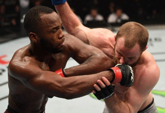 Edwards won his fight at UFC London (Picture: Getty)