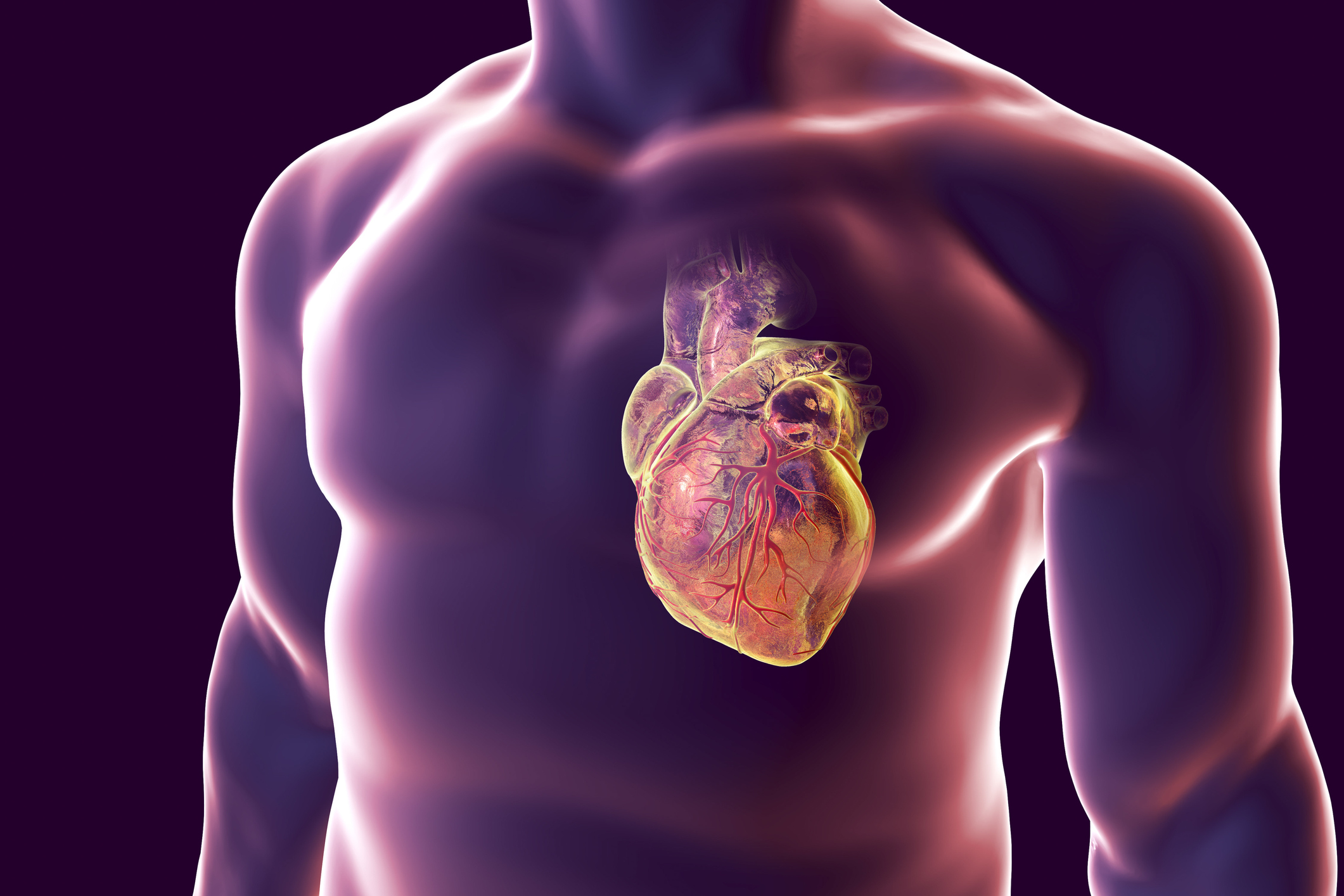 Signs of heart attacks in young people and what to do