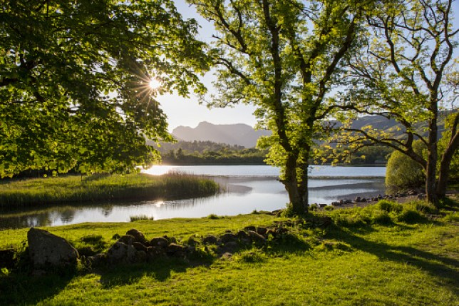 View across Elter Water to the Langdale Pikes, sun shining through trees, Elterwater, near Ambleside, Lake District National Park, Cumbria, England,