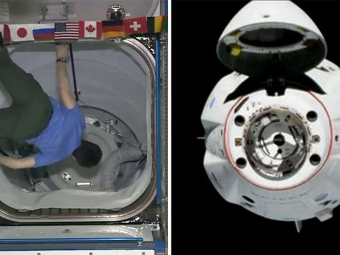 SpaceX Crew Dragon capsule welcomes ISS astronaut aboard after docking