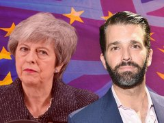 Donald Trump Jr blames Brexit delay on May 'ignoring' his dad's Brexit advice