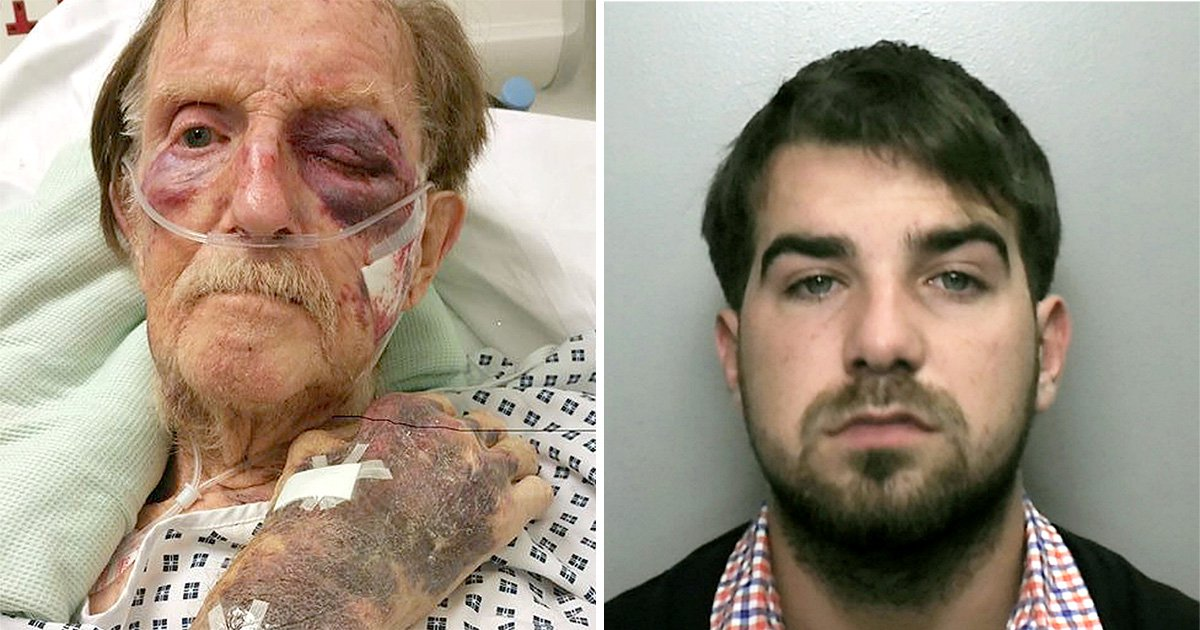 Traveller who killed pensioner, 87, in brutal attack during burglary is jailed for life
