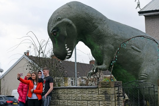 COPY BY TOM BEDFORD Pictured: The Allosaurus dinosaur in the front garden of JerryAdams in Cwmbran, Wales, UK. Re: A 15ft tall Allosaurus has become a star attraction since it arrived at the front garden of a house in Cwmbran, south Wales, with hundreds of people already stopping to get a glimpse. It was auctioned off by Dan-yr-Ogof , The National Showcaves Centre for Wales for charity and Jerry Adams was the highest bidder with an offer of ?1600. Motorists couldn't believe what they were seeing when they passed the dinosaur, complete with number plate on its tail, as it was towed on a trailer around 50 miles along the M4 from the Abercrave attraction on the outskirts of Swansea to its new home. Now people are contacting the showcaves on Facebook to find out exactly where it is so they can take their kids to see the creature, which measures 30ft in length.