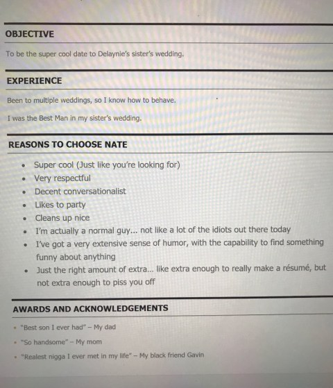 Man Sends Hilarious Cv To Tinder Match To Apply To Be Her