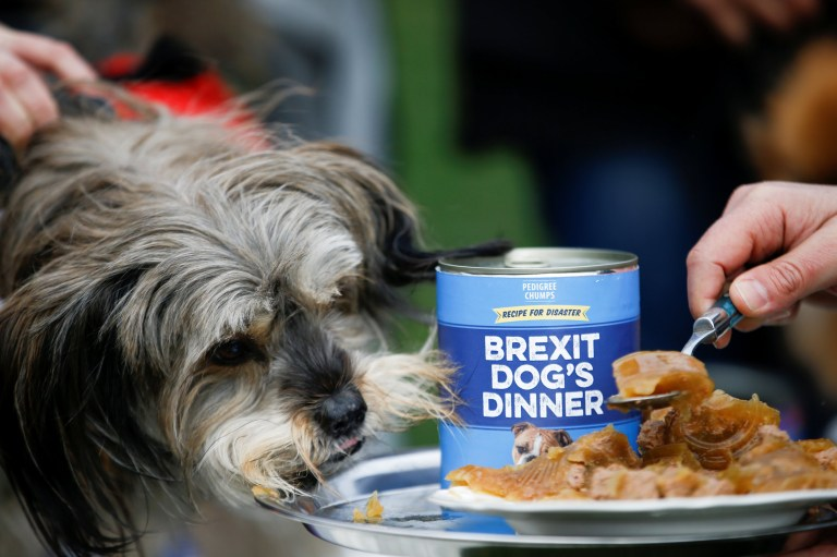 A man feeds food to a dog during the 'Brexit Dogs Dinner' protest outside the Houses of Parliament in London, Britain March 10, 2019. REUTERS/Henry Nicholls