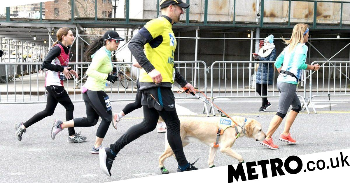 Blind man finishes half marathon with help from adorable guide dogs